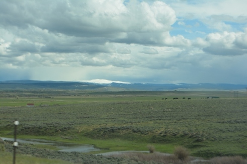 Nevada Scenary 2